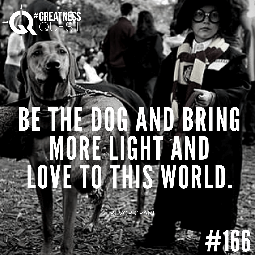Be the dog and bring more light and love to this world.