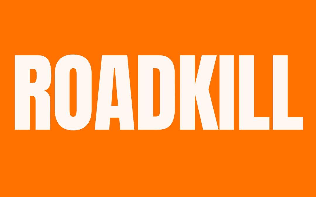 #195: ROADKILL